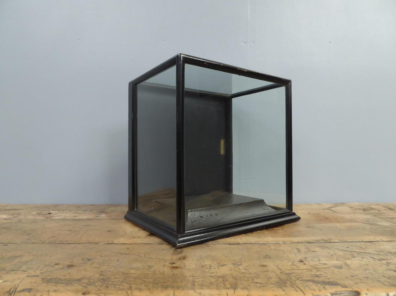 Ebonized Museum Display Cabinet