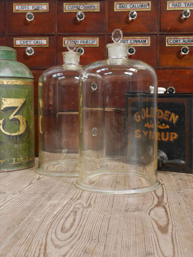 Large Glass Laboratory Display Cloches